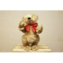 Albert, collection teddy bear for sale Arcto Albert